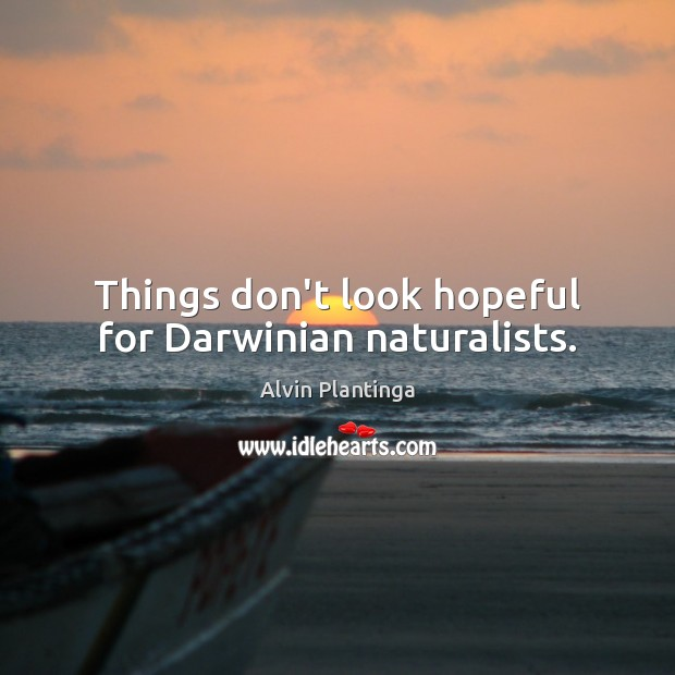 Image, Things don't look hopeful for Darwinian naturalists.