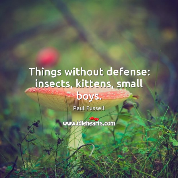 Things without defense: insects, kittens, small boys. Paul Fussell Picture Quote