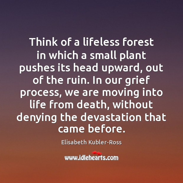 Think of a lifeless forest in which a small plant pushes its Elisabeth Kubler-Ross Picture Quote