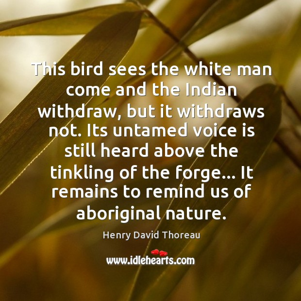 This bird sees the white man come and the Indian withdraw, but Image