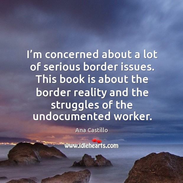 Image, This book is about the border reality and the struggles of the undocumented worker.