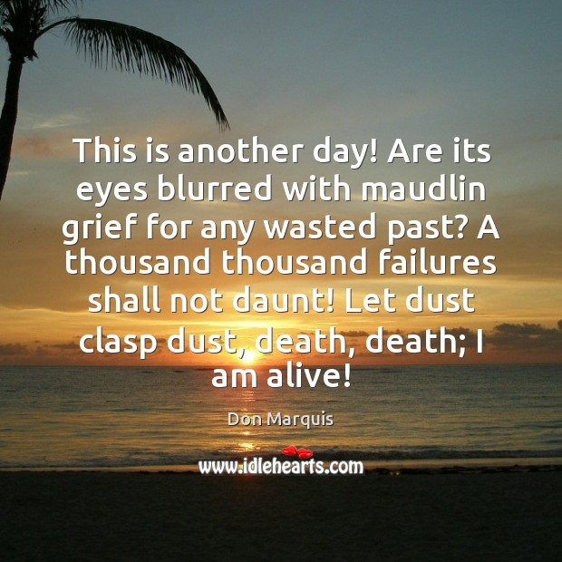 This is another day! Are its eyes blurred with maudlin grief for Don Marquis Picture Quote