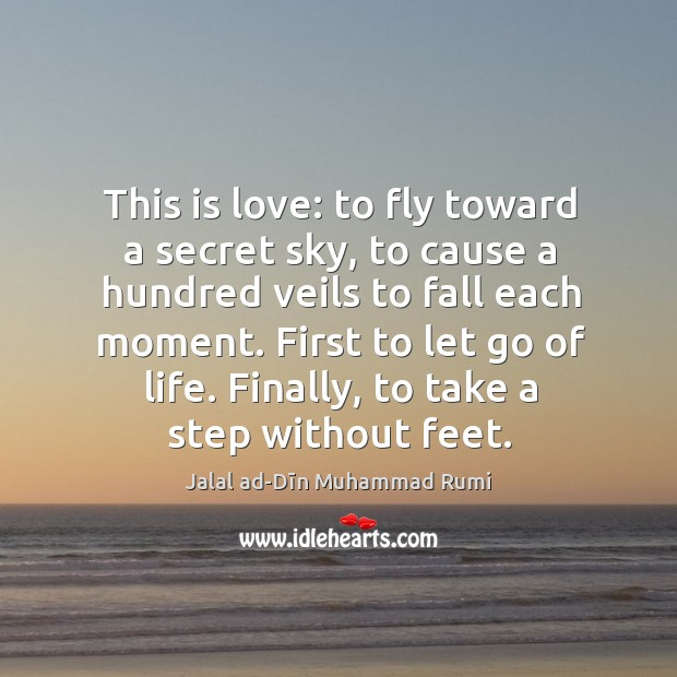 This is love: to fly toward a secret sky, to cause a hundred veils to fall each moment. Image