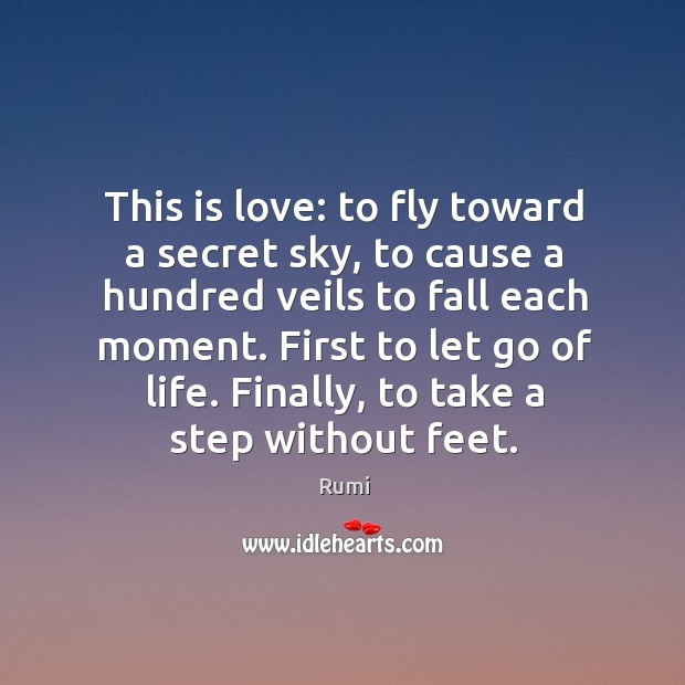 Image, This is love: to fly toward a secret sky, to cause a hundred veils to fall each moment. First to let go of life.