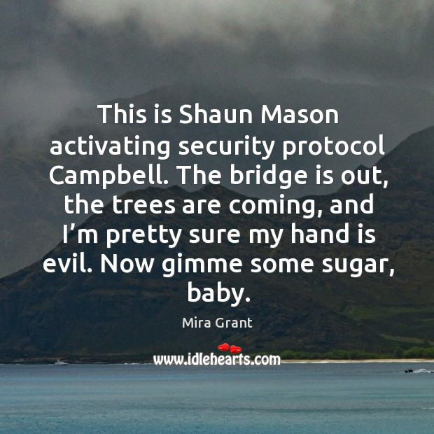 This is Shaun Mason activating security protocol Campbell. The bridge is out, Image