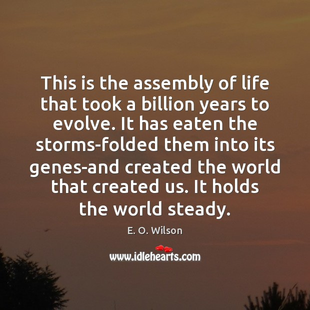 This is the assembly of life that took a billion years to E. O. Wilson Picture Quote