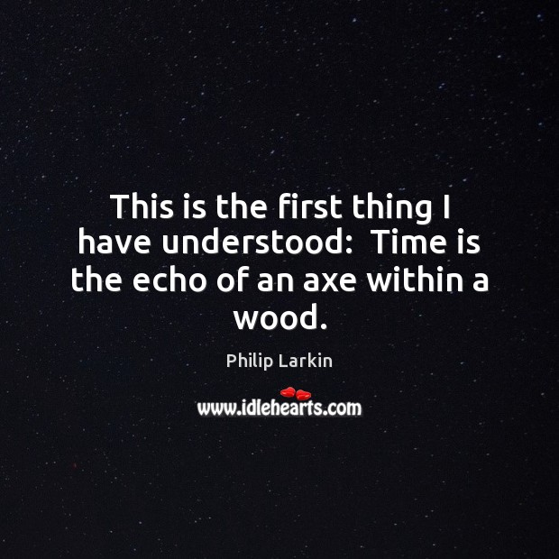 This is the first thing I have understood:  Time is the echo of an axe within a wood. Philip Larkin Picture Quote