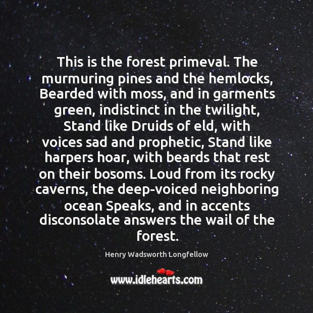 Image, This is the forest primeval. The murmuring pines and the hemlocks, Bearded