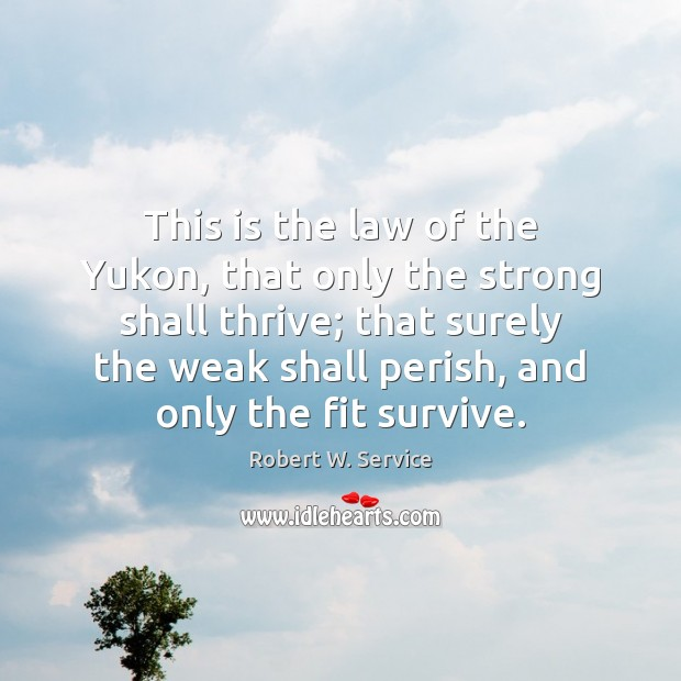 This is the law of the Yukon, that only the strong shall Robert W. Service Picture Quote
