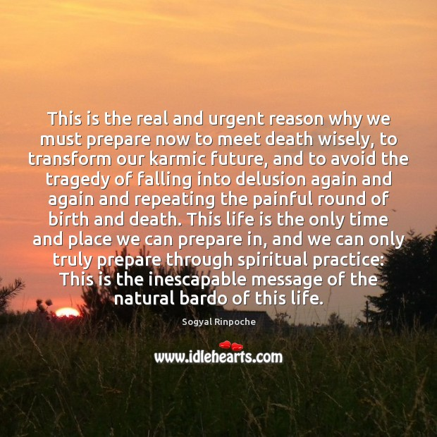 This is the real and urgent reason why we must prepare now Sogyal Rinpoche Picture Quote