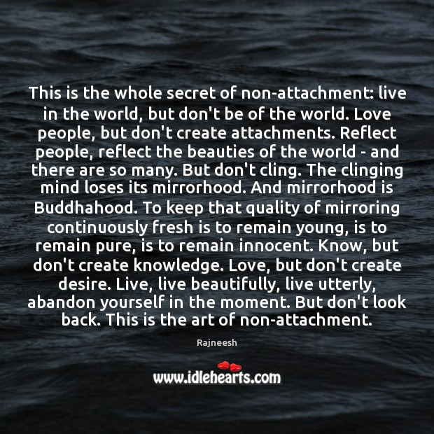 Image, This is the whole secret of non-attachment: live in the world, but