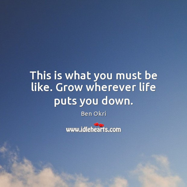 This is what you must be like. Grow wherever life puts you down. Ben Okri Picture Quote