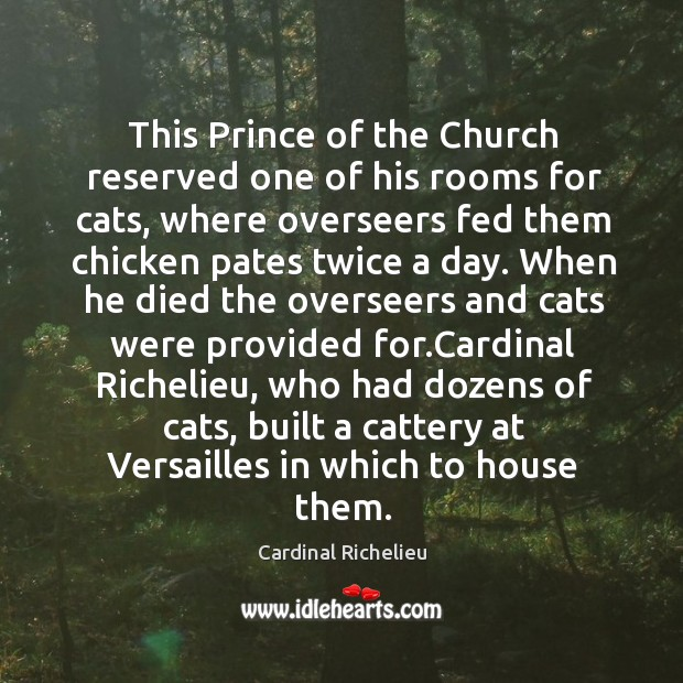 This Prince of the Church reserved one of his rooms for cats, Image