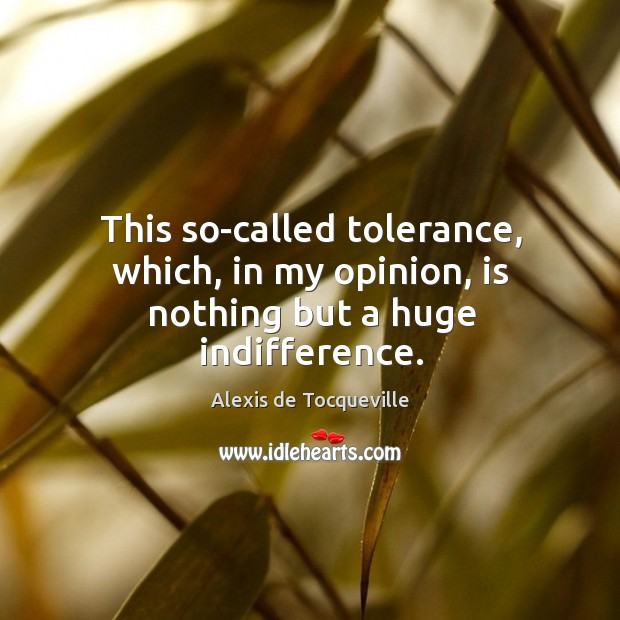 This so-called tolerance, which, in my opinion, is nothing but a huge indifference. Image