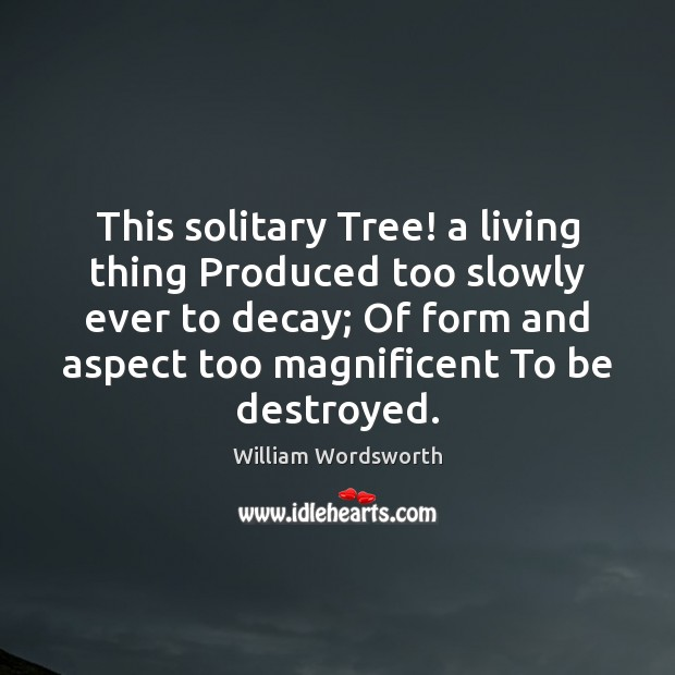 This solitary Tree! a living thing Produced too slowly ever to decay; Image