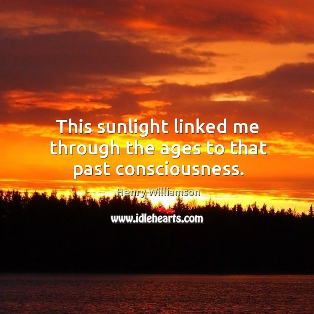 This sunlight linked me through the ages to that past consciousness. Image