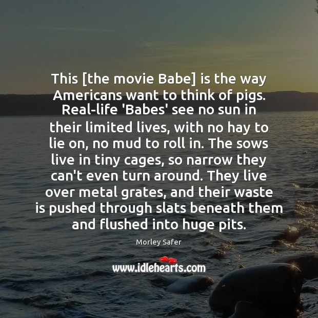 Image, This [the movie Babe] is the way Americans want to think of