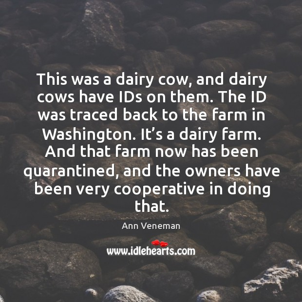 Image, This was a dairy cow, and dairy cows have ids on them. The id was traced back to the farm in washington.