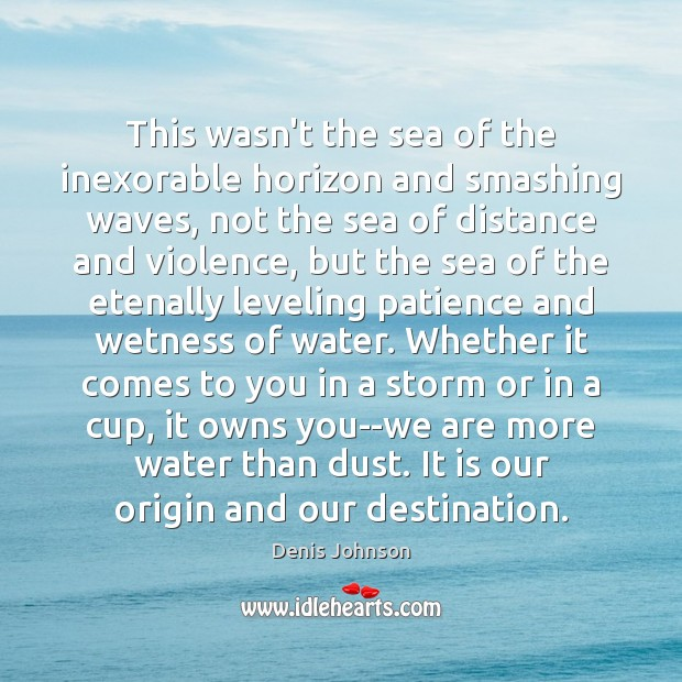 This wasn't the sea of the inexorable horizon and smashing waves, not Denis Johnson Picture Quote