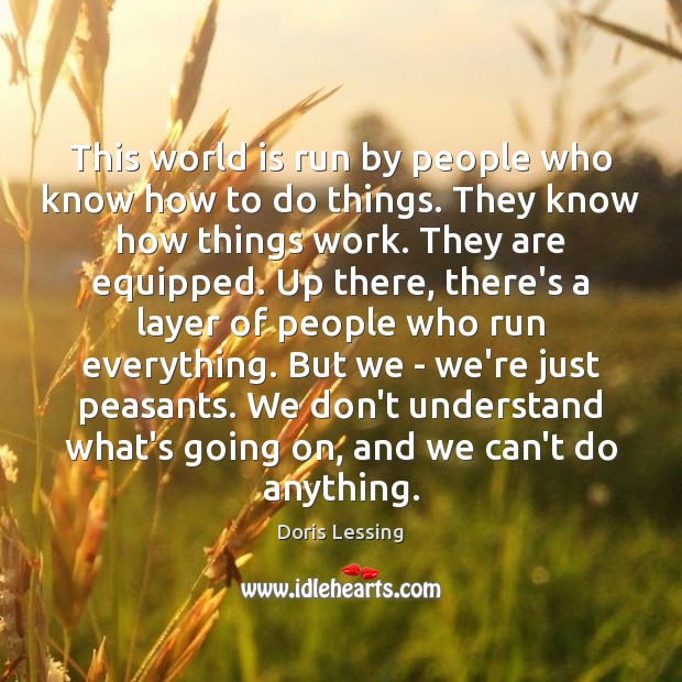 This world is run by people who know how to do things. Doris Lessing Picture Quote