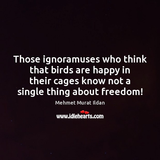 Image, Those ignoramuses who think that birds are happy in their cages know