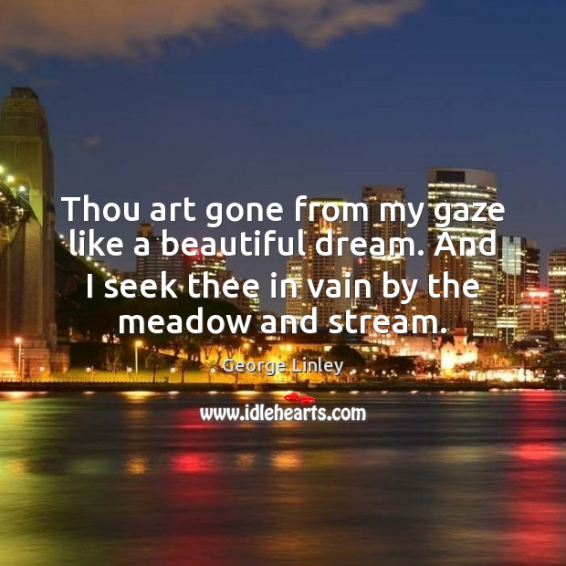 Image, Thou art gone from my gaze like a beautiful dream. And I