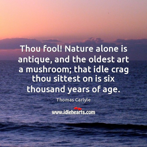 Thou fool! Nature alone is antique, and the oldest art a mushroom; Image
