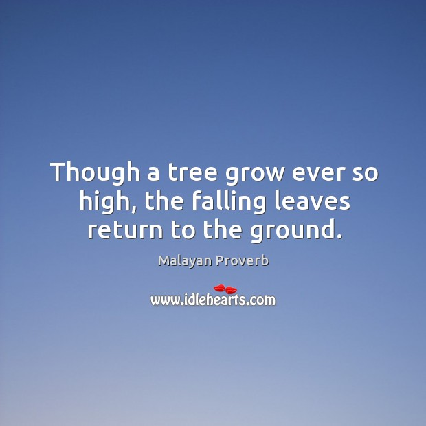 Image, Though a tree grow ever so high, the falling leaves return to the ground.