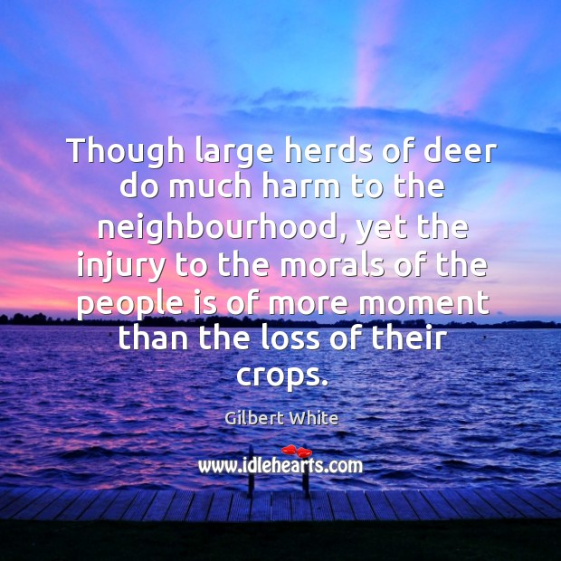 Though large herds of deer do much harm to the neighbourhood Image