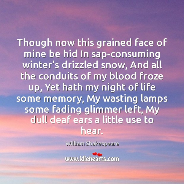 Image, Though now this grained face of mine be hid In sap-consuming winter's