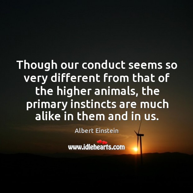 Image, Though our conduct seems so very different from that of the higher