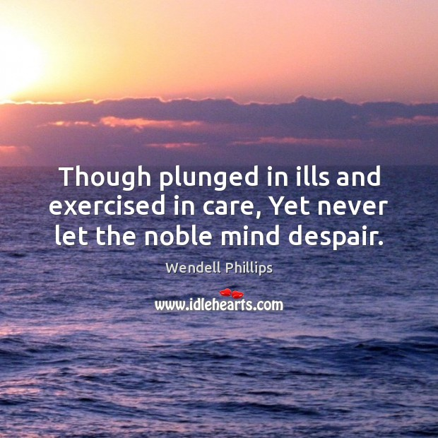Though plunged in ills and exercised in care, Yet never let the noble mind despair. Image