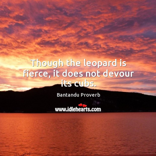 Though the leopard is fierce, it does not devour its cubs. Bantandu Proverbs Image