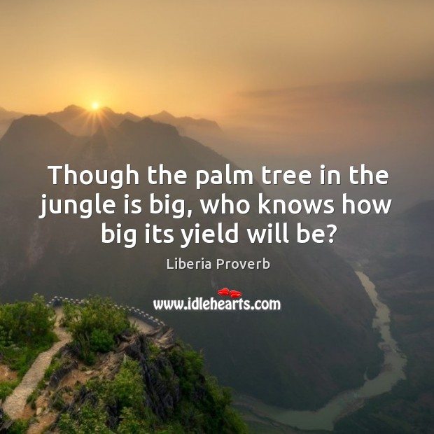 Though the palm tree in the jungle is big, who knows how big its yield will be? Liberia Proverbs Image