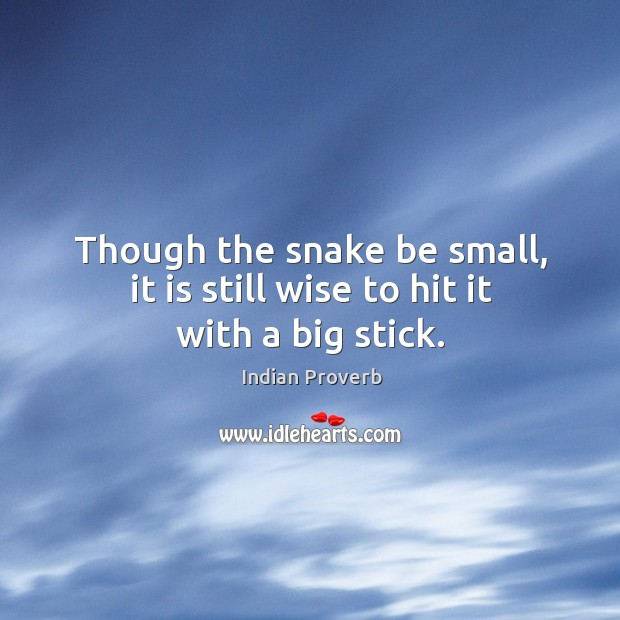 Though the snake be small, it is still wise to hit it with a big stick. Image