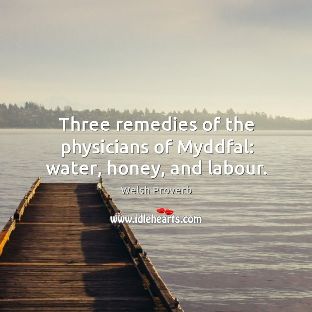 Image, Three remedies of the physicians of myddfal: water, honey, and labour.