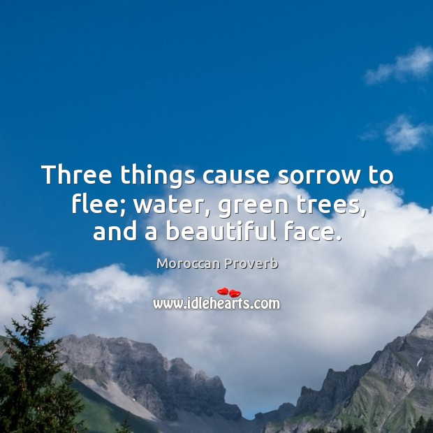 Three things cause sorrow to flee; water, green trees, and a beautiful face. Moroccan Proverbs Image