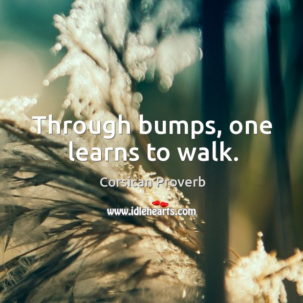 Image, Through bumps, one learns to walk.