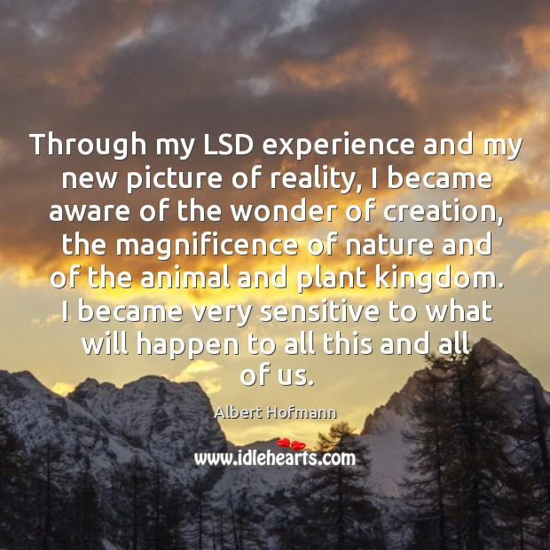 Through my LSD experience and my new picture of reality, I became Image