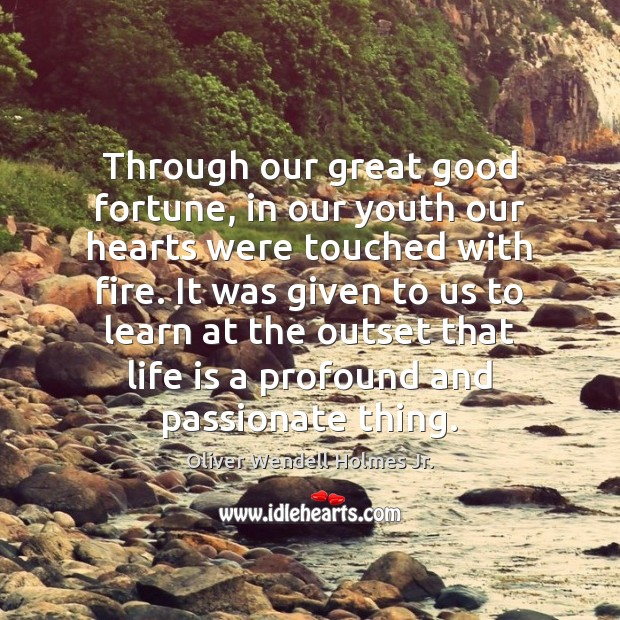 Through our great good fortune, in our youth our hearts were touched Oliver Wendell Holmes Jr. Picture Quote
