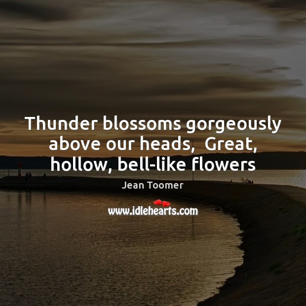 Thunder blossoms gorgeously above our heads,  Great, hollow, bell-like flowers Jean Toomer Picture Quote