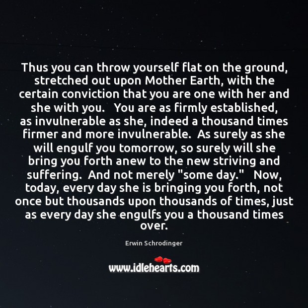 Thus you can throw yourself flat on the ground, stretched out upon Erwin Schrodinger Picture Quote