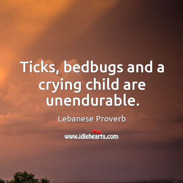 Ticks, bedbugs and a crying child are unendurable. Lebanese Proverbs Image