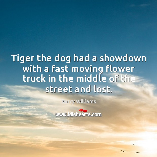 Image, Tiger the dog had a showdown with a fast moving flower truck in the middle of the street and lost.
