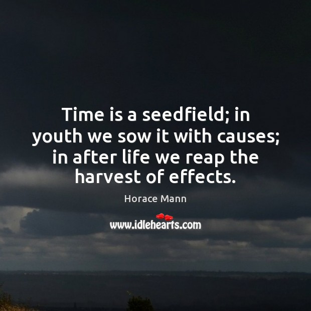Time is a seedfield; in youth we sow it with causes; in Horace Mann Picture Quote