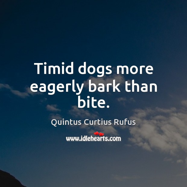 Image, Timid dogs more eagerly bark than bite.