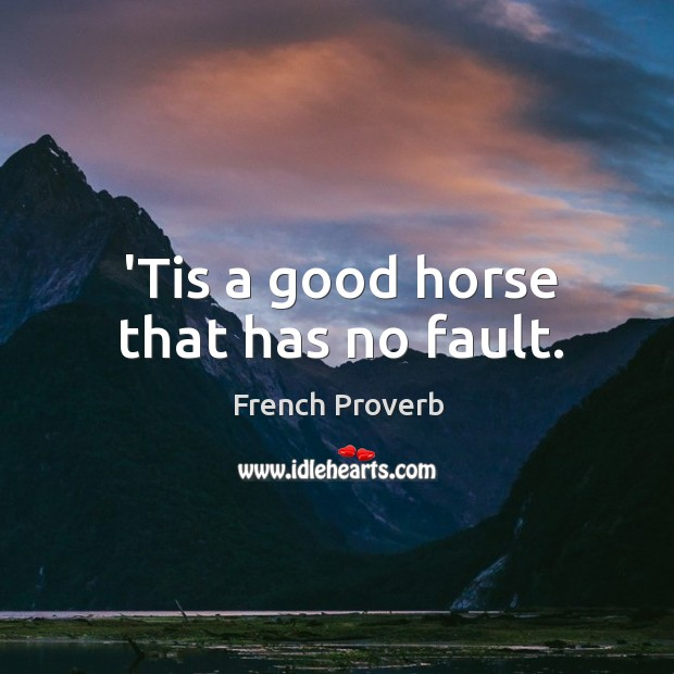 'tis a good horse that has no fault. French Proverbs Image