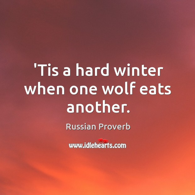 'tis a hard winter when one wolf eats another. Russian Proverbs Image