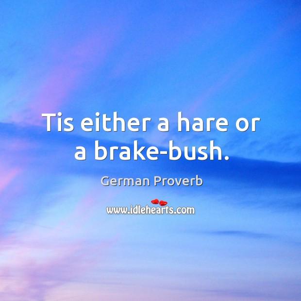 Tis either a hare or a brake-bush. German Proverbs Image