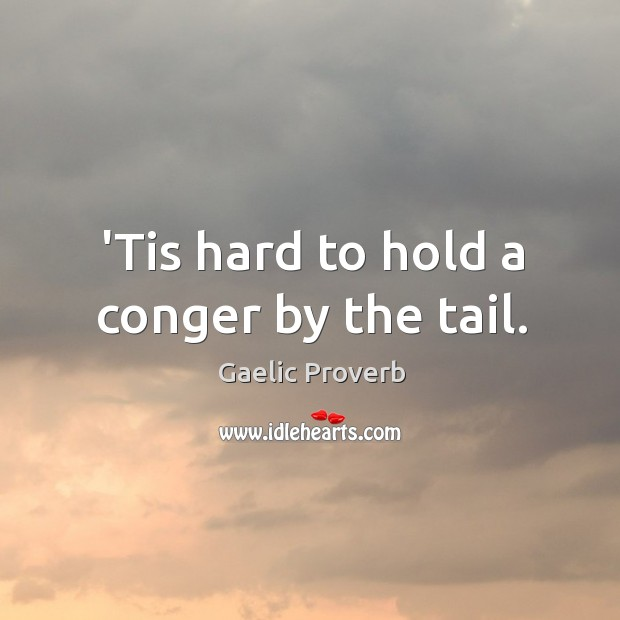 'tis hard to hold a conger by the tail. Gaelic Proverbs Image